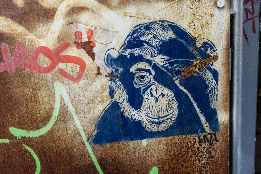 stencil - cazl - kastanien allee . berlin