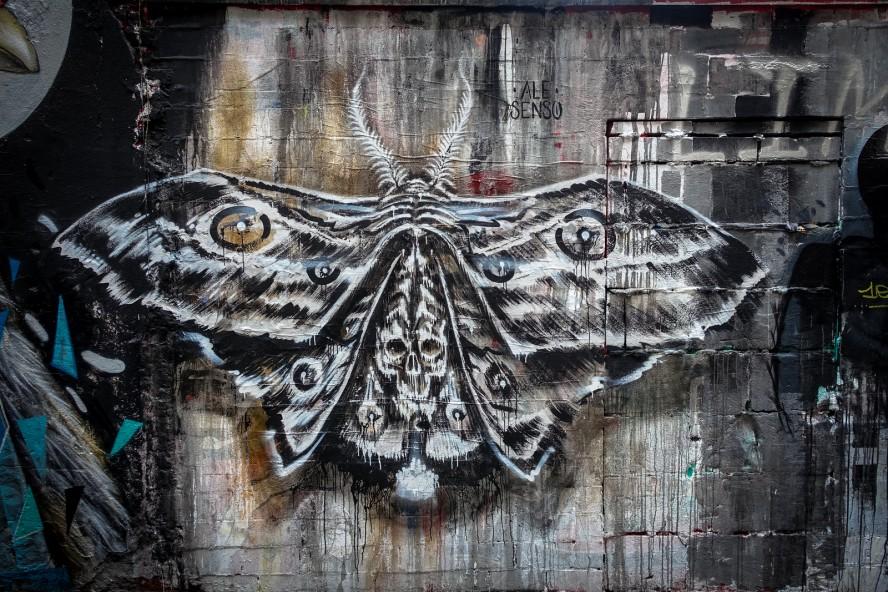 streetart - ale senso - haus schwarzen berg, berlin mitte
