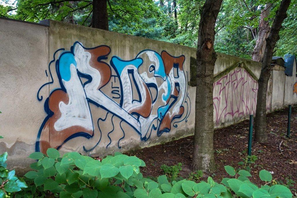 graffiti - rosa - berlin, mitte
