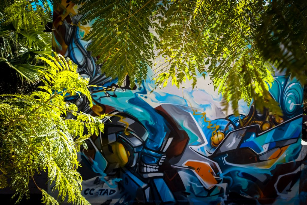 graffiti - zmogk & neok (cc) - jardin rouge, marrakesh