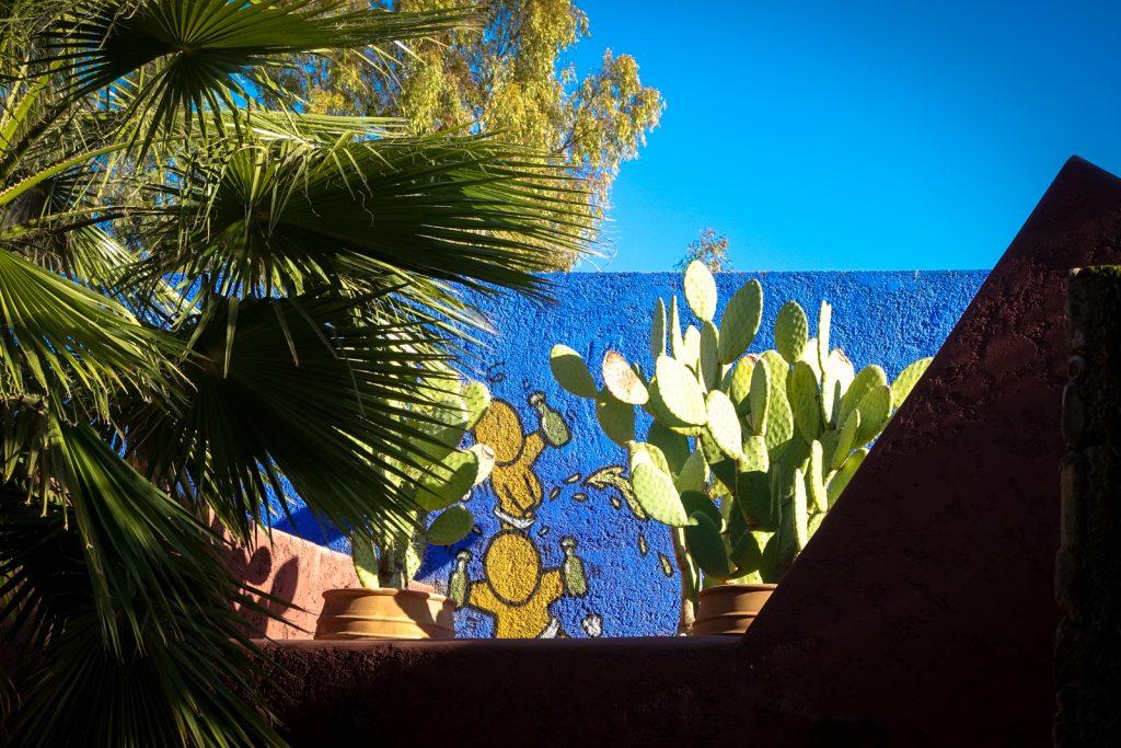 streetart - jace -  jardin rouge, marrakesh
