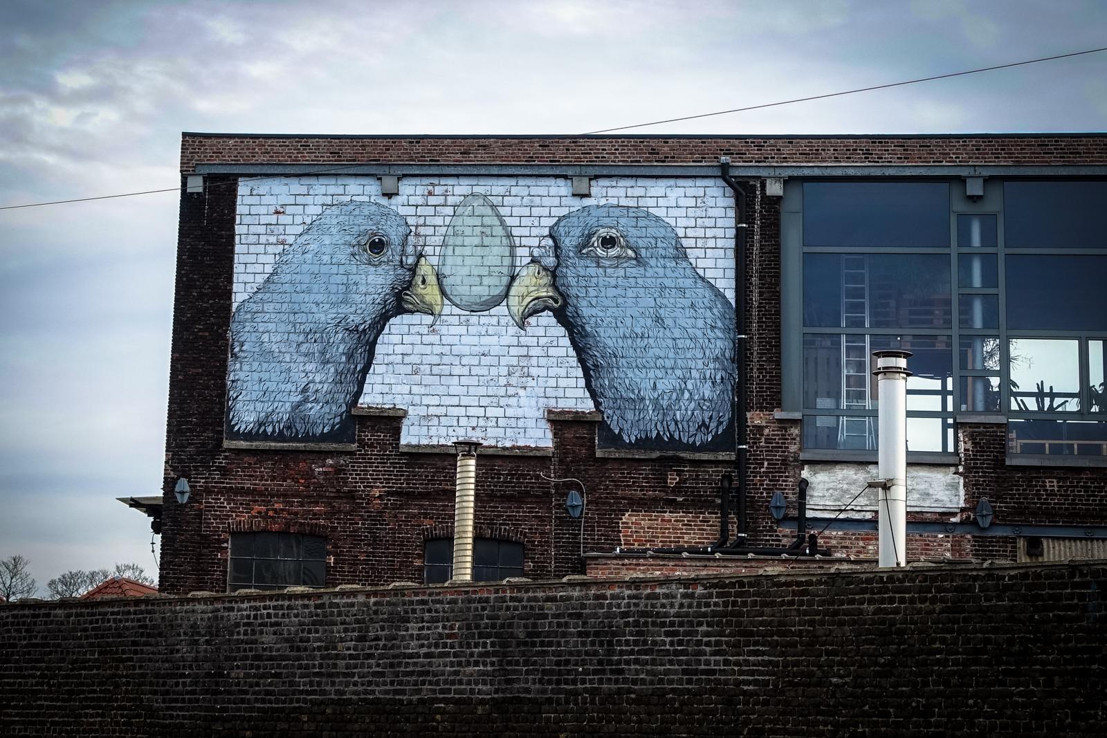 erica il cane mural, ghent – belgium