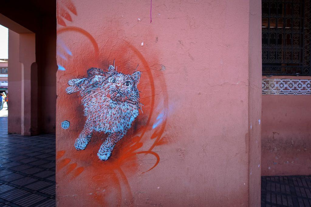 stencil - c215 - marrakesh, jemaa el fna