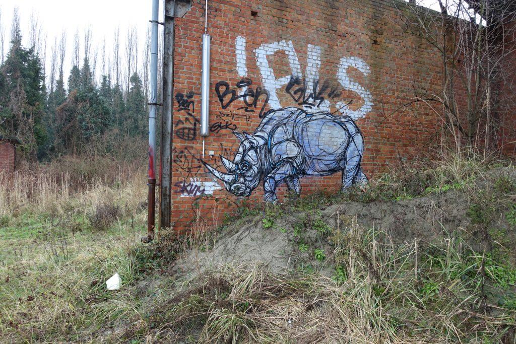 graffiti - dzia - petrol, antwerpen