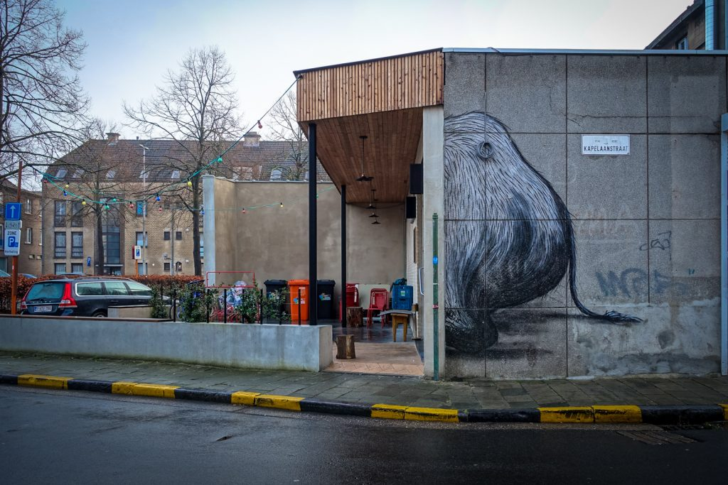 streetart - roa - gent