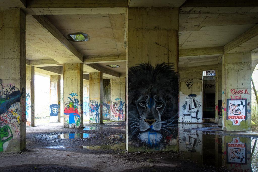 urbex art - swamp hotel, mechelen, belgien