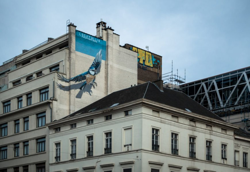 streetart murals in brüssel