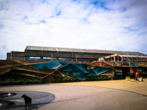 mural - disorderline - the crystal ship, oostende, belgium