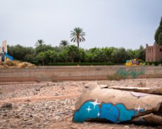 urban art in the direct environment of the jardin rouge, october 2017 – marrakesh