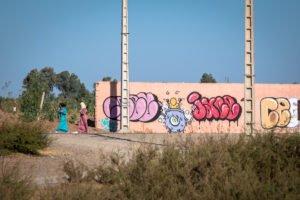 graffiti - ceet & jace - outside the jardin rouge