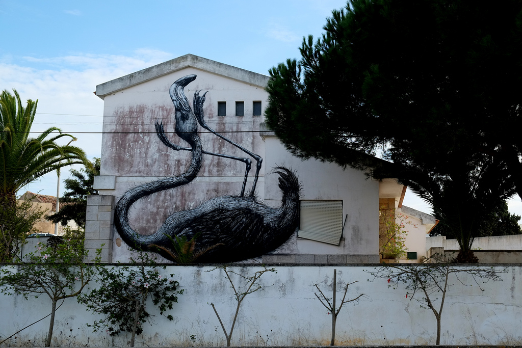 streetart in rahmen vom ARTUR (Artistas Unidos em Residência) – lagos